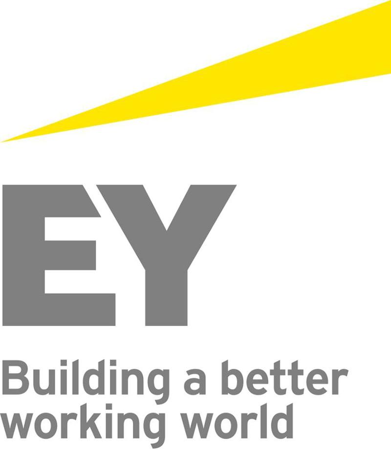 EY даст рекомендации по реформированию Нафтогаза в конце августа ...