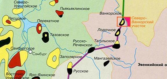 лодочное месторождения красноярского края