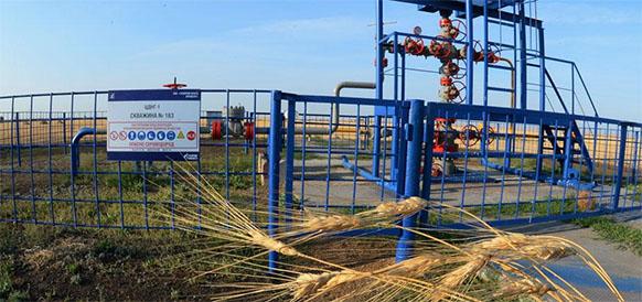 Восточный участок Оренбургского нефтегазоконденсатного месторождения