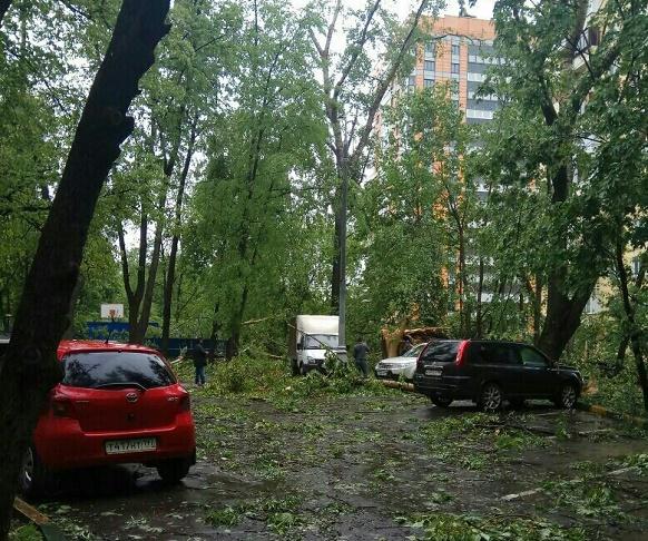 ВМосковской области из-за непогоды неменее 7-ми тыс. человек остались без света