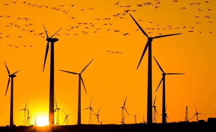 Возобновляемая энергетика дорогое удовольствие, за которое платят европейцы и не смогут платить россияне