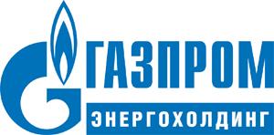 Показав уверенный рост финансовых показателей в 2015 г, Газпром энергохолдинг строит планы на 2016 г