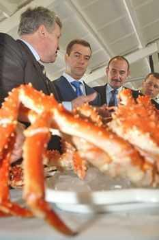 Дмитрий Медведев поработает лоббистом «Газпрома»