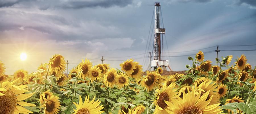 Газпромнефть-Оренбург нарастила запасы Царичанского участка недр
