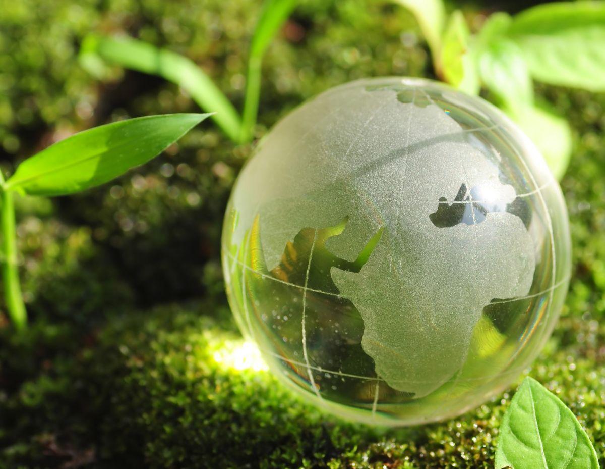О формировании экологического сообщества в регионах расположения ключевых предприятий ГК «Росатом»