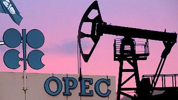 Баррель нефти ОПЕК упал в цене до 43,67 долл США