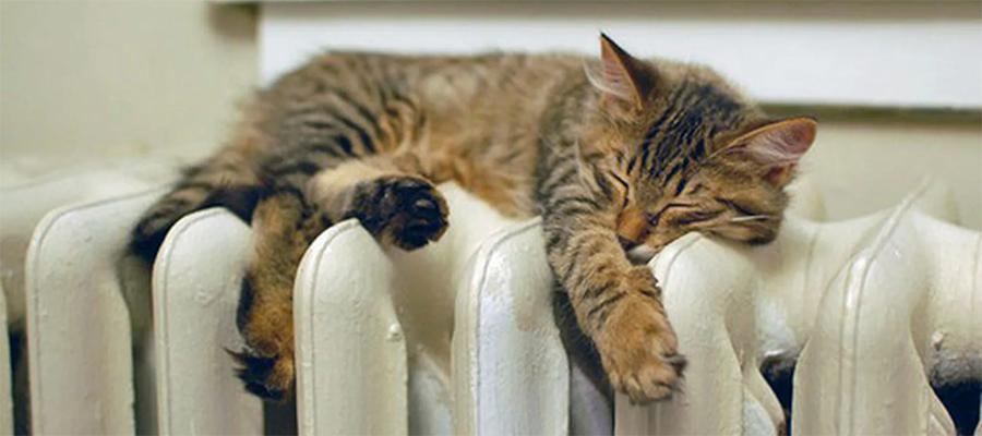 В Московской области возобновлена подача тепла в квартиры и на социальные объекты
