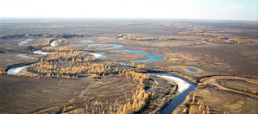 На Ямале провели расчистку территорий от металлолома, стройматериалов и другого мусора