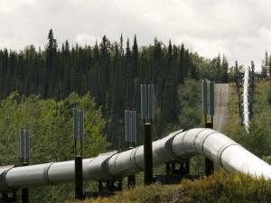 Металлурги на распутье: «Газпром» и «Транснефть» охладели к строительству трубопроводов?