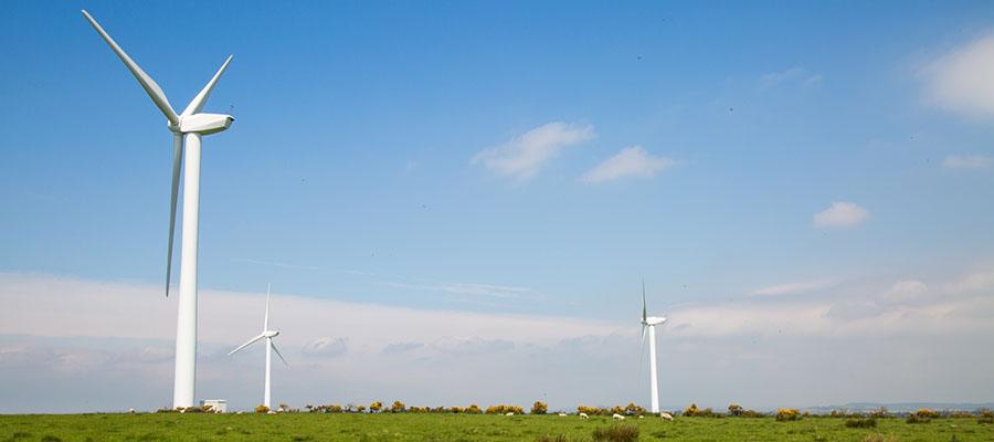 В Ростовской области началось строительство 1-й ВЭС мощностью 90 МВт