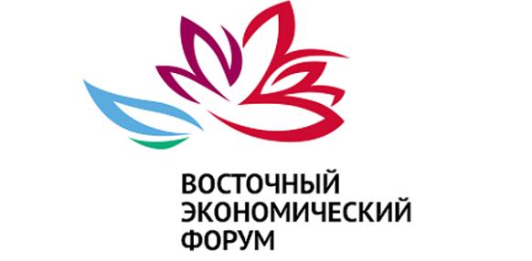 ФСК ЕЭС серьезно подходит к развитию электросетевой инфраструктуры на Дальнем Востоке