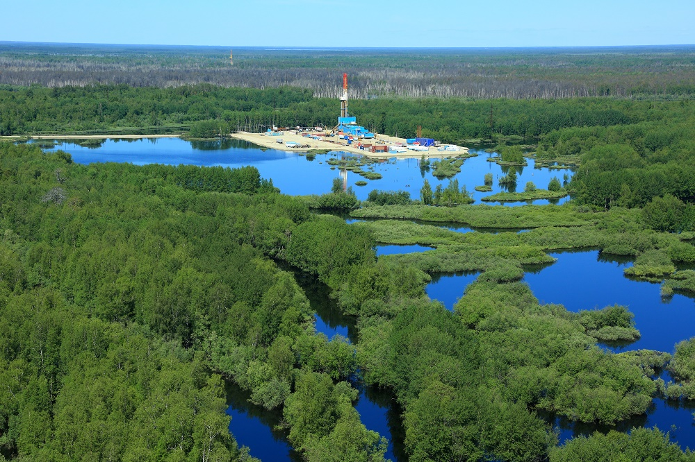 Особенности состава газов залежей углеводородов арктического сектора Западной Сибири