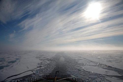Вывод из обращения озоноразрушающих веществ