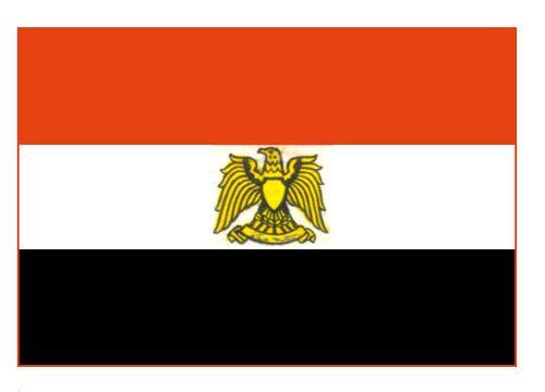 Египет рассчитывает на скорое подписание договора с Газпромом о сжиженном газе