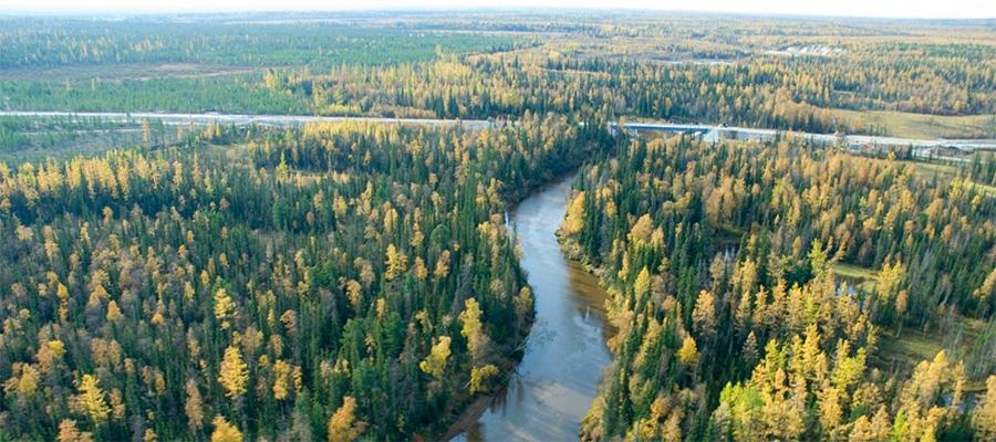 Газпром нефть нарастила запасы Чонского проекта в Восточной Сибири. Снова прирезки