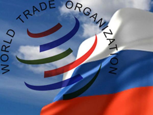 Валерий Язев: Вступление России в ВТО - отличная возможность доказать нашу профессиональную состоятельность