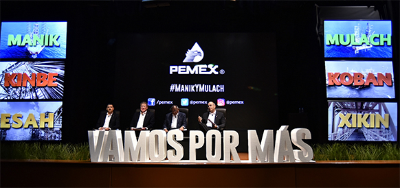 Pemex discovers important oil fields in shallow waters of the Southeast Basin