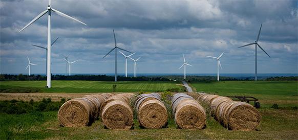 В 2018 г. белорусские установки ВИЭ выработали на 17,5% больше электроэнергии