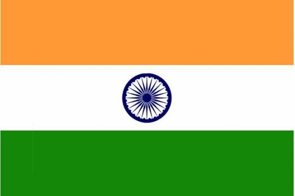 Индия получит долю 30% в крупнейшем газовом блоке на шельфе Мозамбика