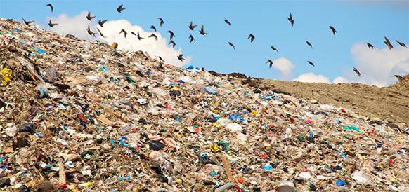 Правительство РФ снизило ставку платы за негативное воздействие на окружающую среду для малоопасных коммунальных отходов в 7 раз