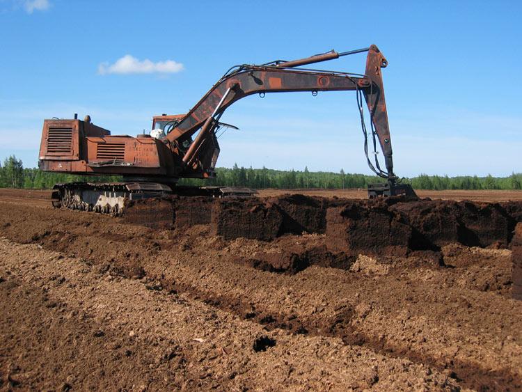 Добыча торфа – реальность для центральных районов России