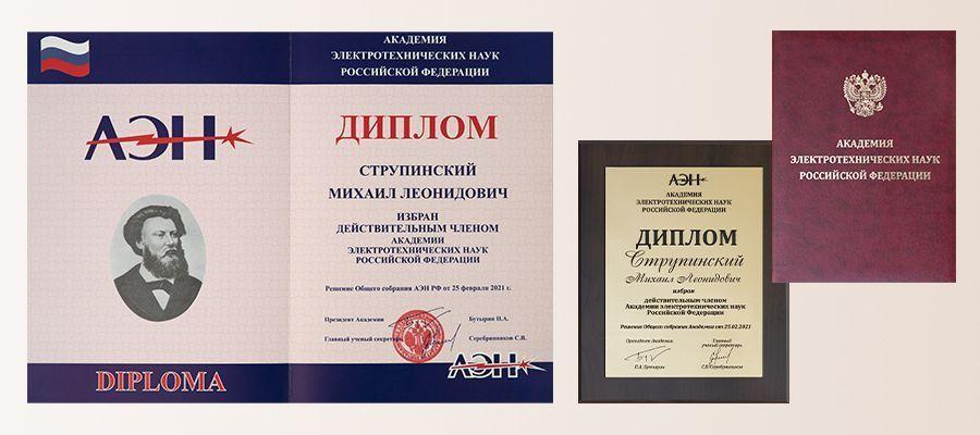 Михаил Струпинский избран действительным членом АЭН РФ