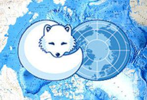 «Неожиданный» итог X конференции Арктического Совета