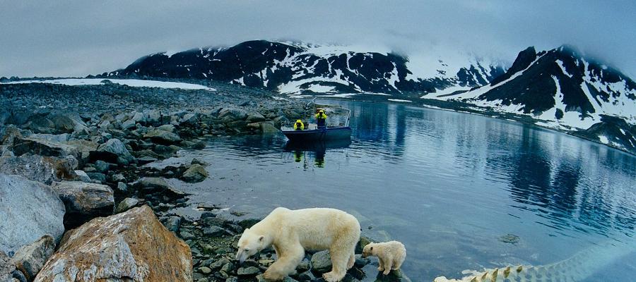 Одобрена инфраструктурная господдержка для 6 новых проектов в Арктике
