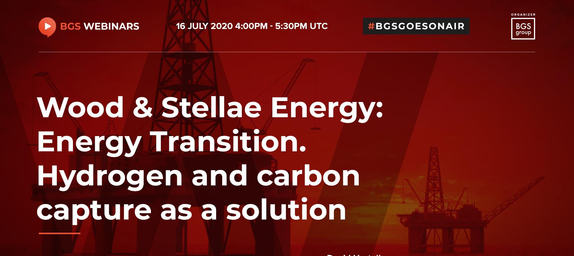 Wood & Stellae Energy: Energy Transition. Hydrogen and carbon capture as a solution