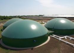 Zorg Biogas запустил биогазовую установку на ферме под Днепропетровском
