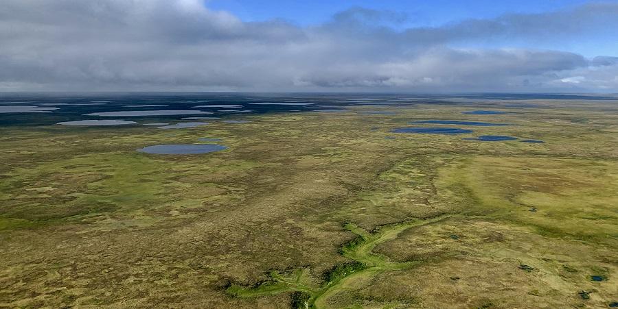 Газпром нефть и Shell запустили совместный проект разработки масштабного кластера углеводородов на п-ве Гыдан