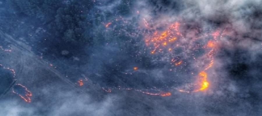 Ученые подсчитали количество углекислого газа, выброшенного в атмосферу из-за пожаров в Сибири