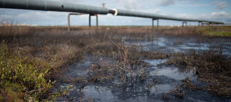 В Сургуте уже неделю не ликвидирован разлив нефти в притоке Оби