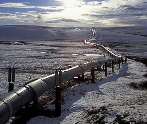 Каждый километр газопровода Сила Сибири обойдется в 8 млн долл США