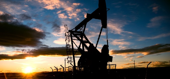 Regal Petroleum добилась роста прибыли на Украине в 2014 г