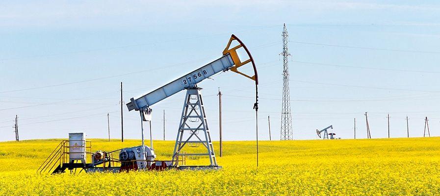 Промышленной добыче нефти в Удмуртии исполнилось 50 лет