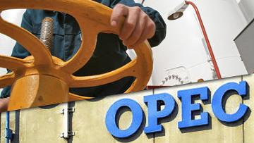 ОПЕК не поменяет квоты на добычу нефти раньше октября