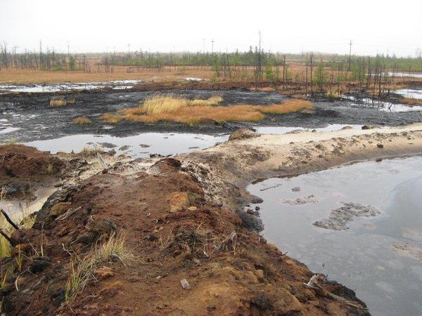 Нефтезагрязнения и основные технологические способы урегулирования последствий