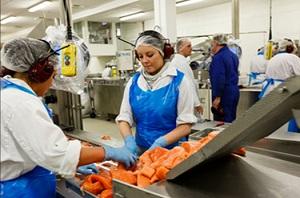 Конфликт Запада и России помог Фарерским островам увеличить экспорт лосося в 6 раз
