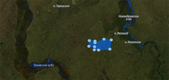 Novatek obtains Payutskiy license area on Gydan