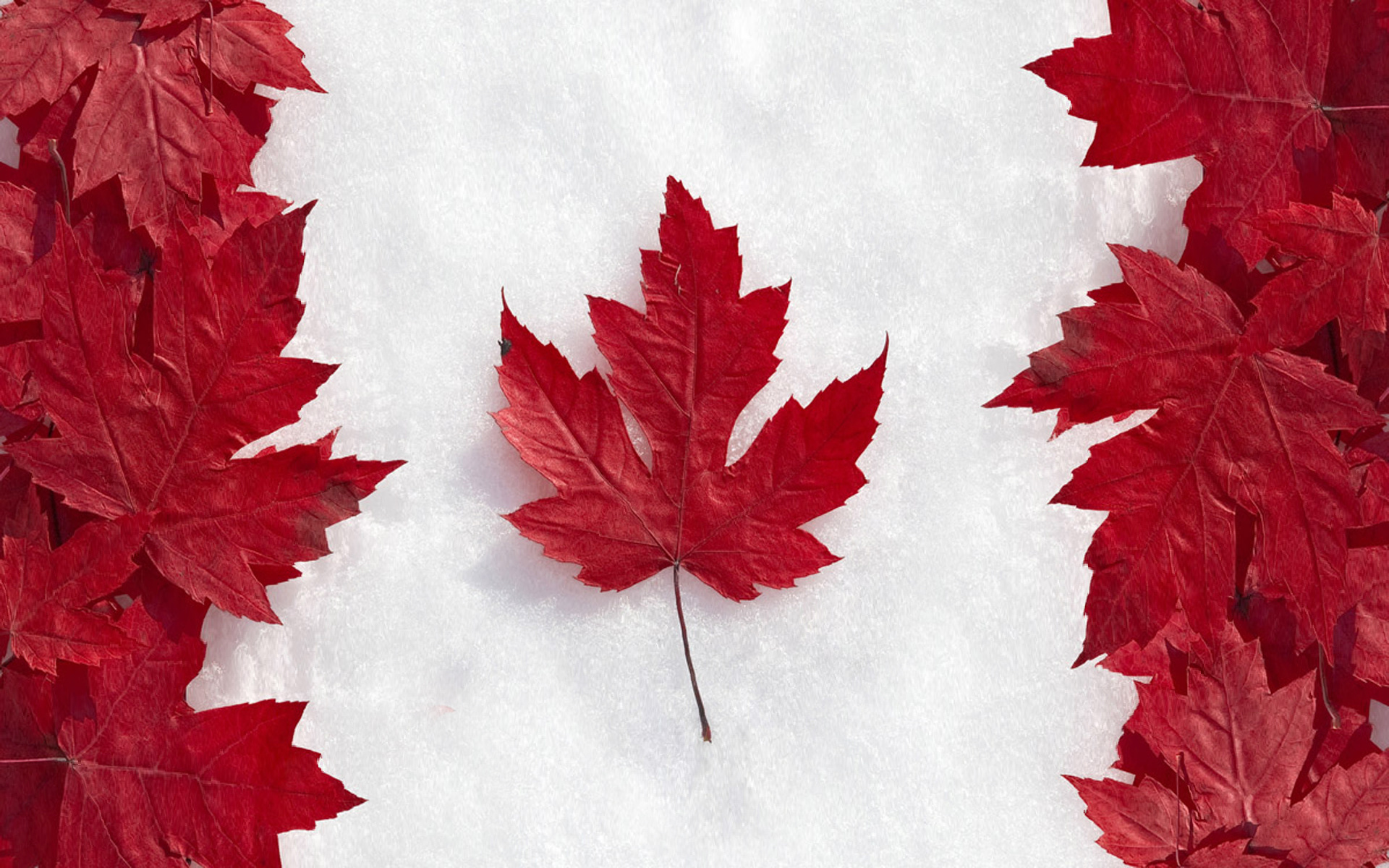 Канаду обвиняют в чрезмерном экспорте нефти