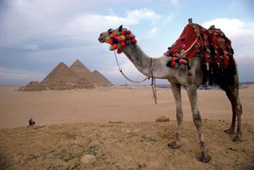 В Египте будет официально запущен завод по сжижению газа. Несмотря на проблемы Dana Gas с исламскими бондами Sukuk