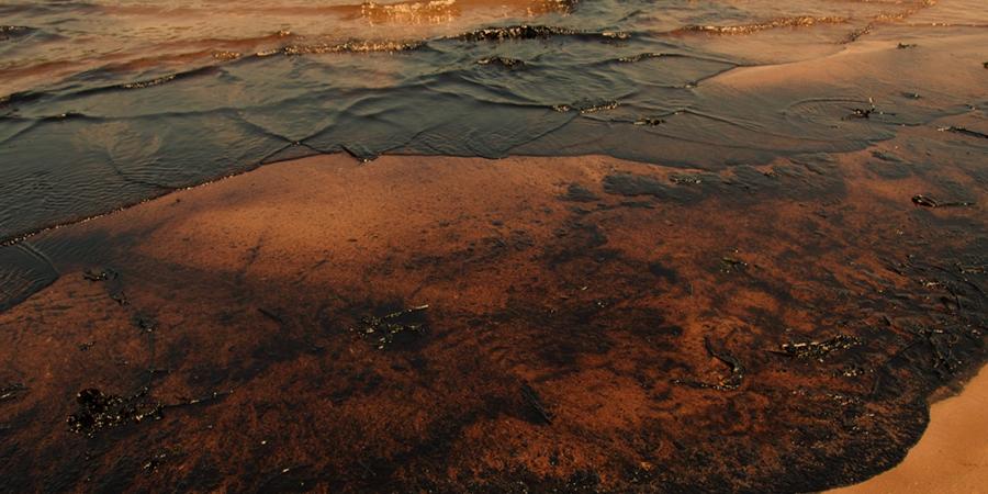 В Саратовской области зафиксирован выброс нефтепродуктов в р. Волга