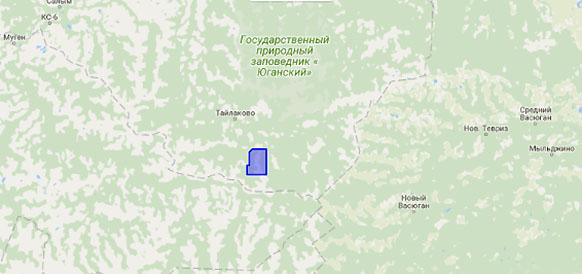 Гавриковское нефтяное месторождение в Ханты-Мансийском автономном округе будет введено в эксплуатацию в 2018 г. С. Кисловым?