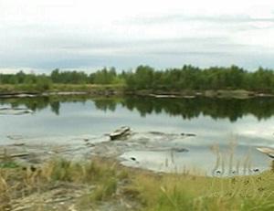 Освоение шельфа Печорского моря планируется начать в 2013 году