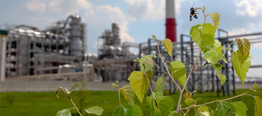 Новокуйбышевский и Куйбышевский НПЗ Роснефти повышают уровень экологического мониторинга
