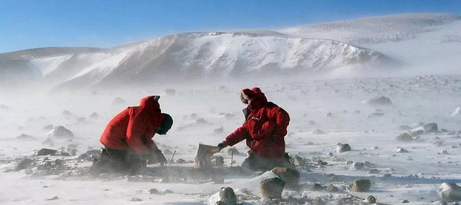 Кабмин утвердил Стратегию развития деятельности России в Антарктике до 2030 г.