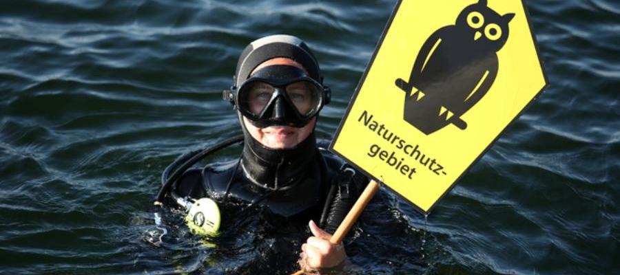 Немецкие экологи из NABU подали иск против строительства Северного потока-2. DUH в одиночестве не остался
