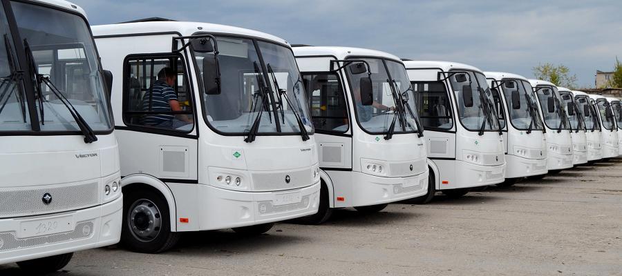 В Питере до конца года появится еще 250 автобусов на природном газе