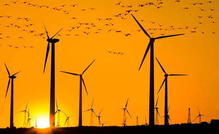 Jobs in renewables grow to almost 10 million